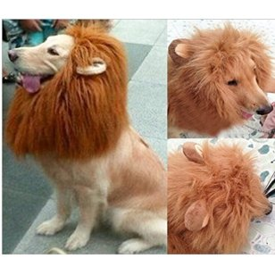 lion-mane-costume