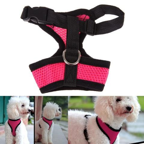 CELEBRATIONS AND SUNSETS DOG HARNESS